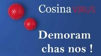 Cosina.jpg